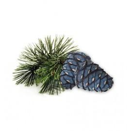 Żel aromatyczny do infrared - Arolla Pine